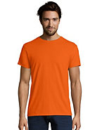 Hanes Mens Nano-T T-Shirt (Multi Colors)