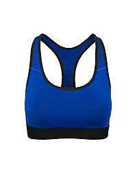 Champion The Absolute Workout Sports Bra