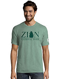 Hanes Men's  ComfortWash™ Zion National Park Short Sleeve Tee