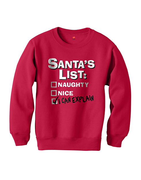 Hanes Boys' I Can Explain Santa Sweatshirt