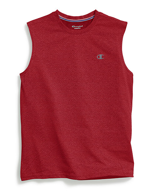 562ab6a0 Champion Men's Double Dry® Mesh Texture Muscle Tee | Champion